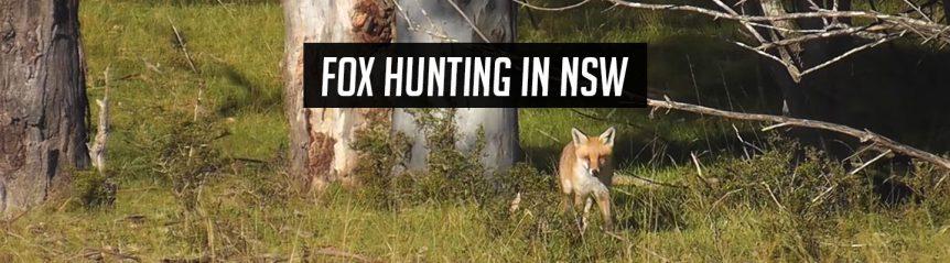 foxhuntingnsw_header