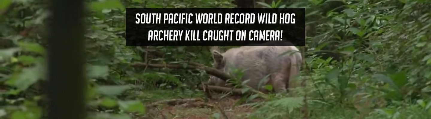 worldrecord_archerykill