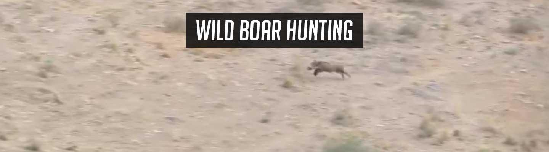 boar_hunting_header